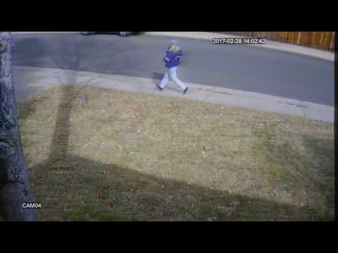 Mail truck runs over mail boxes
