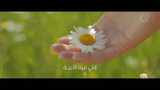 «الأبية» قصيدة جديدة للشاعرة أمل الشقير: لن يمسوا من حجابي (فيديو)