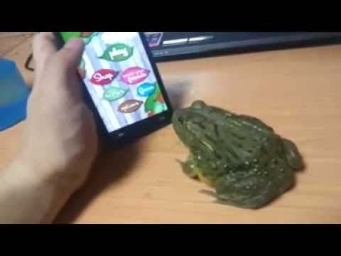 How to piss off a frog from YouTube · Duration:  27 seconds