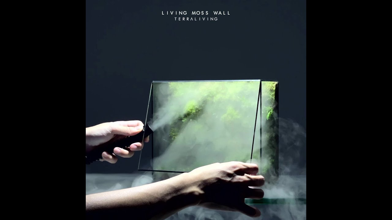 How to make a desktop Living Moss Wall with fog by TerraLiving