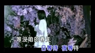 KTV孫淑媚  流星雨