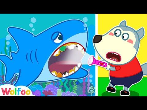 Brush Teeth for Baby Shark - Wolfoo Learns Healthy Habits for Kids | Wolfoo Family Kids Cartoon