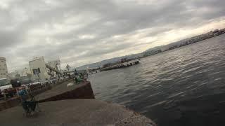 2019年10月17日10時51分 大阪湾 関西製糖 公衆トイレ前 DAISOジグ投げ ツバス釣りの様子3