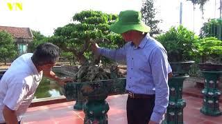 Khảo giá vườn đẹp anh Toan Nguyễn Hải Hậu Nam Định