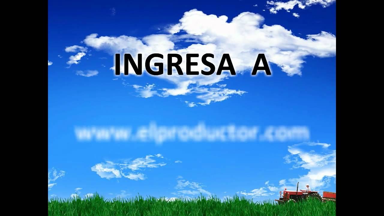 Download El Productor   1er. Periódico Agropecuario del Ecuador