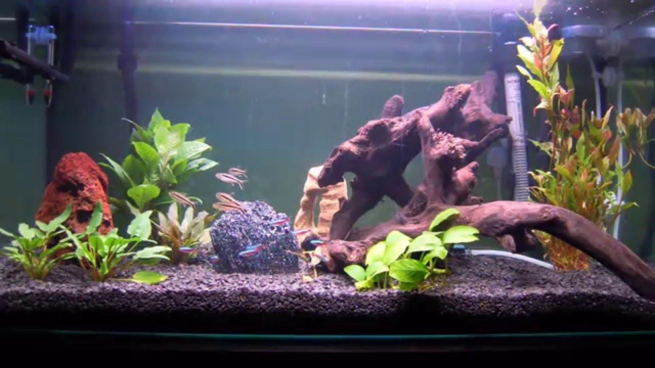 Moje Akwarium Oświetlenie Nocne Led My Aquarium Night Blue Led Light
