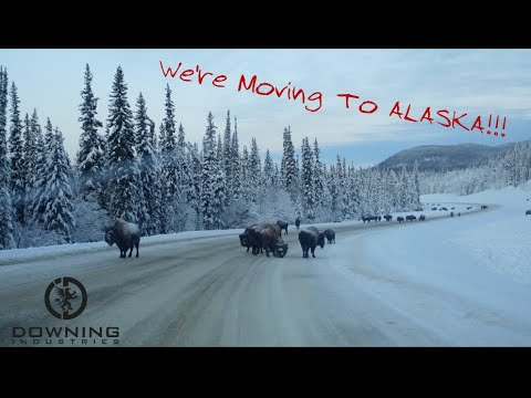Moving To Alaska!