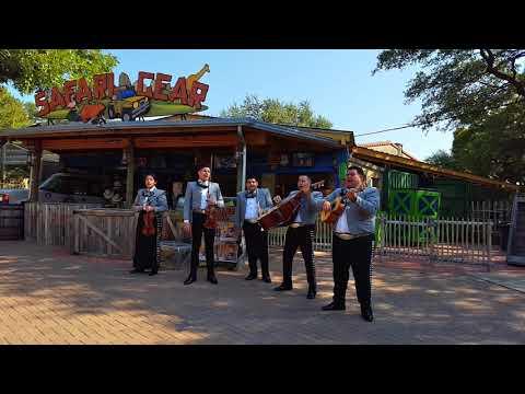 San Antonio Zoo : Cultural Program