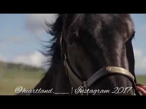Heartland Amy And Spartan Edit