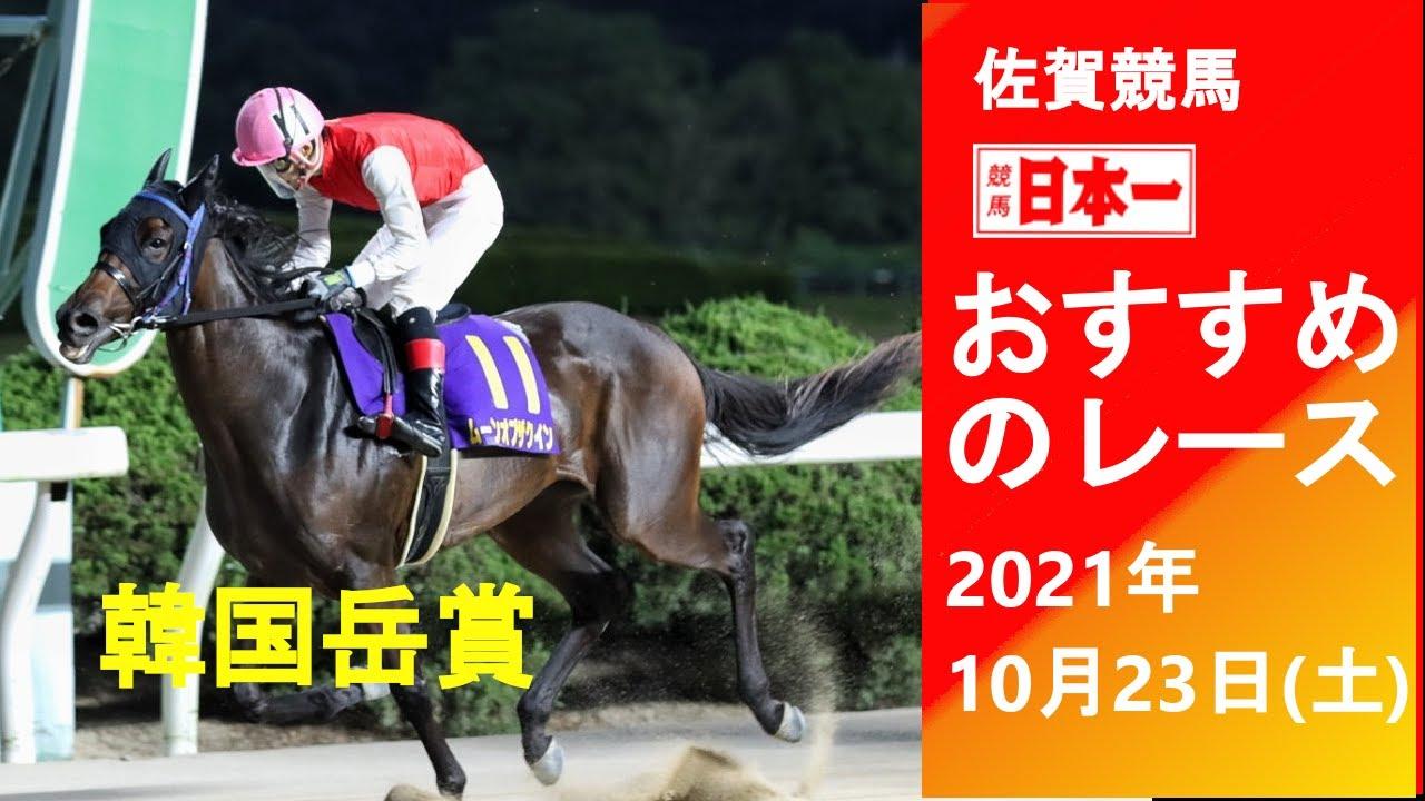 「競馬日本一チャンネル」10月23日(土)のおすすめレース紹介
