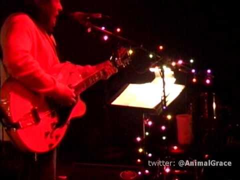 ANIMAL GRACE's Tony Powell - Solo & Acoustic