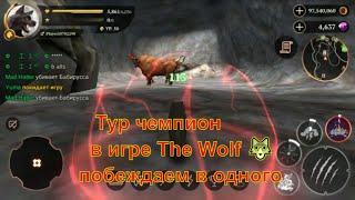 Тур чемпион в игре The Wolf
