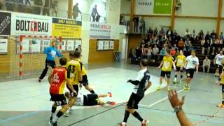 Gambar cover Handball Club Lakers Stäfa