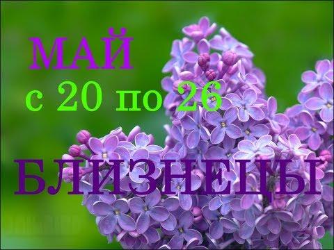 БЛИЗНЕЦЫ. ГОРОСКОП на НЕДЕЛЮ с 20 по 26 МАЯ 2019г.