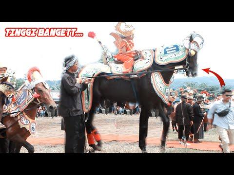 Kuda Renggong Sumedang Tertinggi dan Goyang Terheboh Hardfest 2019 Jatigede