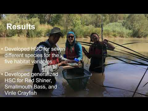 Developing Habitat Suitability Criteria To Protect Streamflow For Desert Fishes