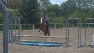 Julie & Voline - 60cm Poney Club d