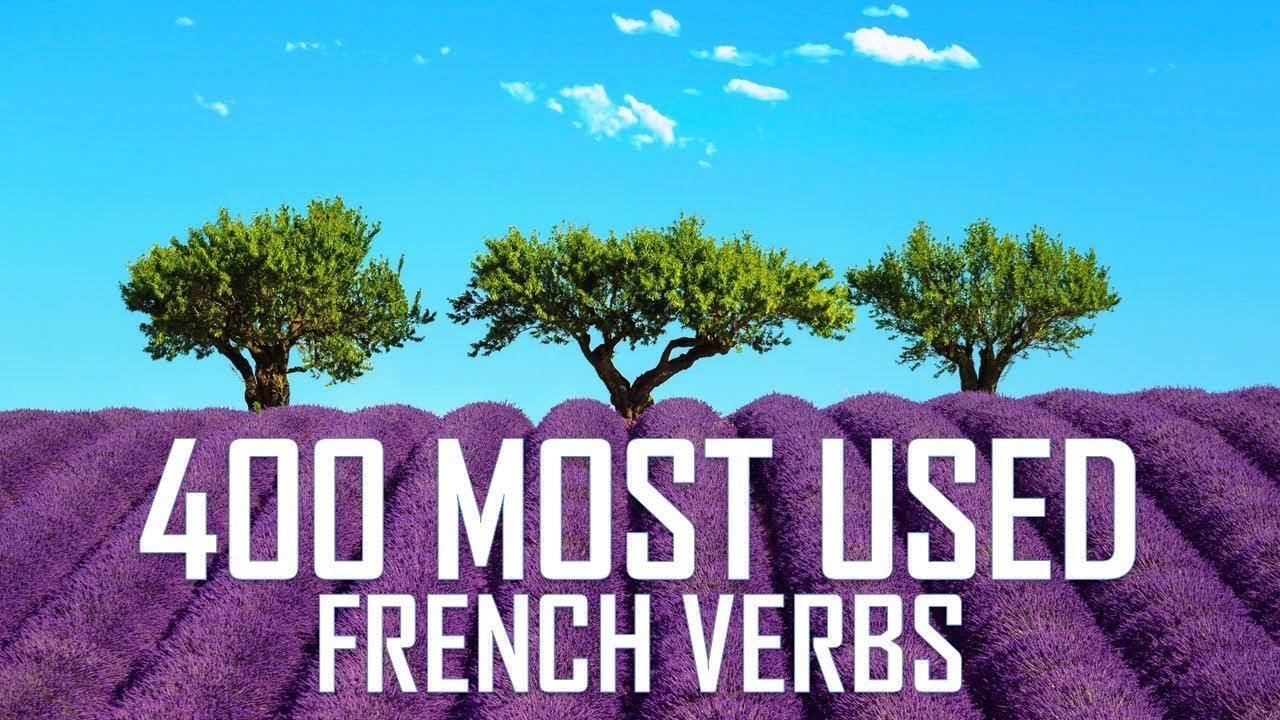 The 400 most used French verbs conjugated in the 11 most used tenses / Abattre