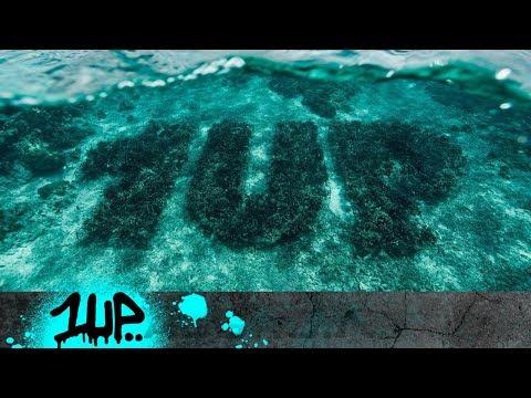 1UP - CORAL REEF