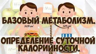 Определение суточной калорийности. Расчет базового уровня метаболизма