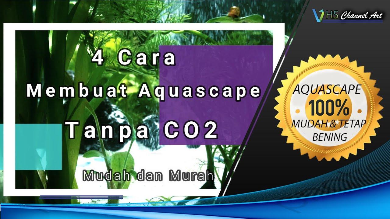 4 Cara Membuat Aquascape Tanpa CO2/ Simple Aquascape - YouTube