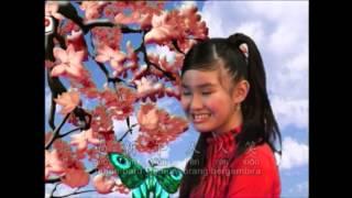 新年好 Xin Nian Hao - 劉莉莉 Lidya Lau (CNY)
