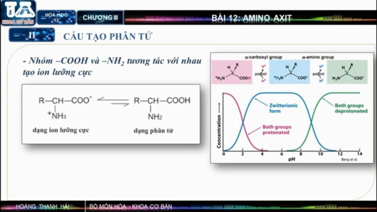 HÓA HỌC 12: CẤU TẠO VÀ TÍNH CHẤT HÓA HỌC CỦA AMINO AXIT (ACID AMIN) | HỌC TRỰC TUYẾN – CHEMICAL TV