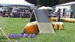 Dazzle Agility Trial - Mega-dogs Nadac 5/24/09