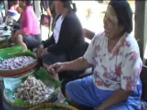 Market Sumbawa Besar (2008)