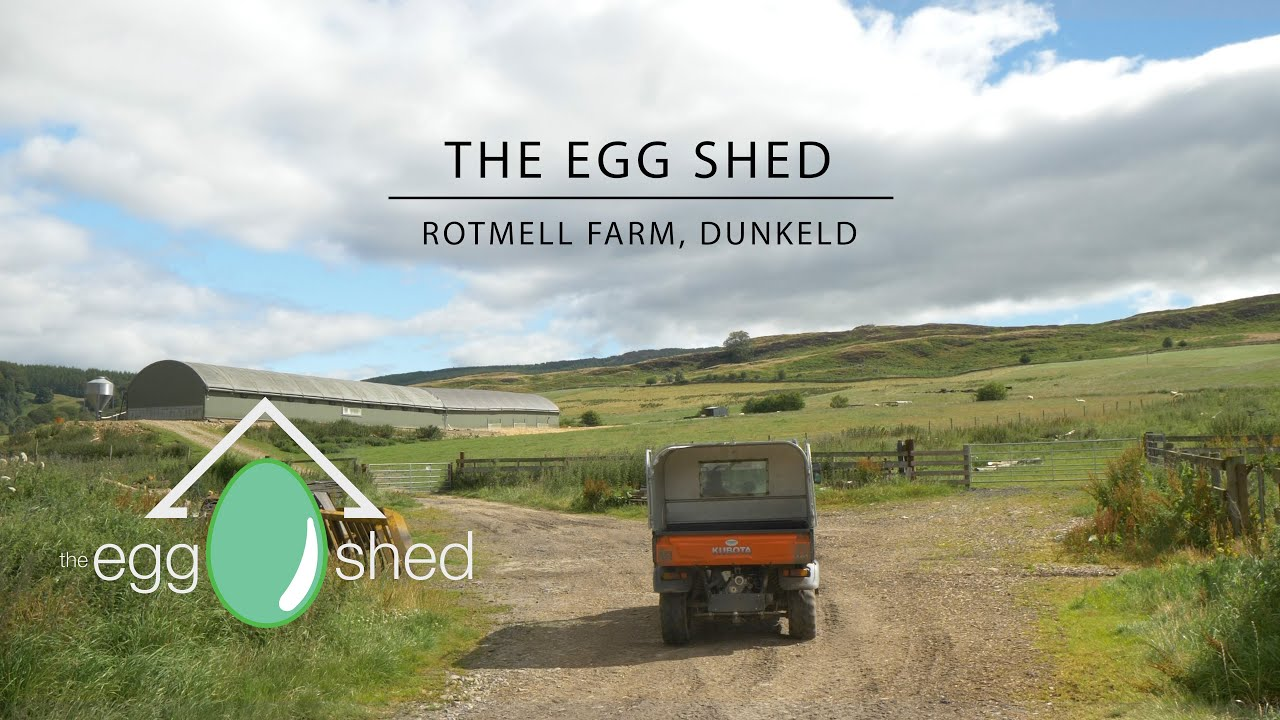 The Egg Shed - Collecting free range organic eggs from the Egg Shed, Rotmell Farm, Dunkeld.