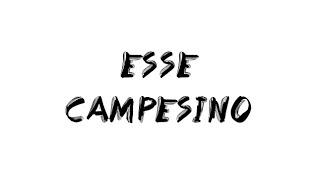 Esse : Campesino ( paroles + traduction )