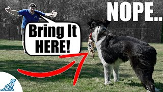 Fix Your Fetch!  For Dogs That Don't Bring It Back