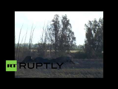 Ukraine: Gas transit pipeline under investigation after explosion