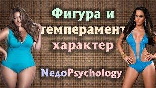 ТЕЛОСЛОЖЕНИЕ и ХАРАКТЕР: эктоморф, мезоморф, эндоморф.