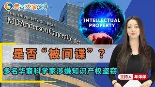 """多名华裔科学家被疑知识产权盗窃  是""""被""""还是""""愿""""?《焦点大家谈》2019.11.05 第52期"""