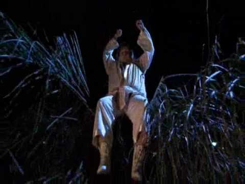 chris farley beverly hills ninja @ palm tree