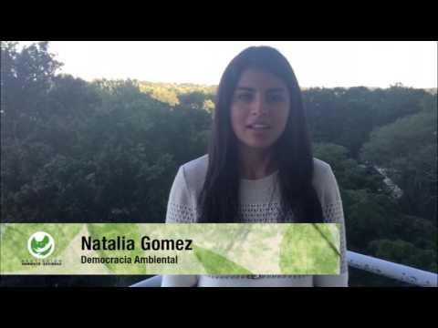 Sí Ambiental por el fortalecimiento de la democracia ambiental-Paz Ambiental