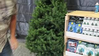 Christmas Tree Accessory Rack Assembly