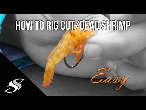 How To Rig Cut/Dead Shrimp For Fishing - Simple!