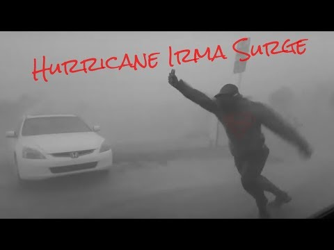 Hurricane Irma Surge (U.S)