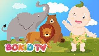 Learn Animals - Elephant, Lion, Bear | Bé Học Tiếng Anh | Nhạc Thiếu Nhi Tiếng Anh Vui Nhộn BoKidTV