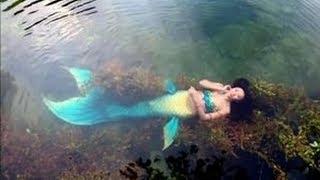 Sirenas Reales Captadas Al Rededor del Mundo