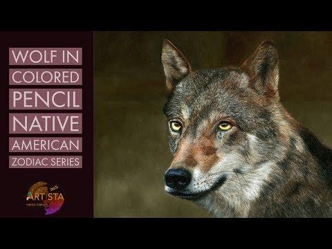 Realistic Wolf In Colored Pencil   Native American Zodiac