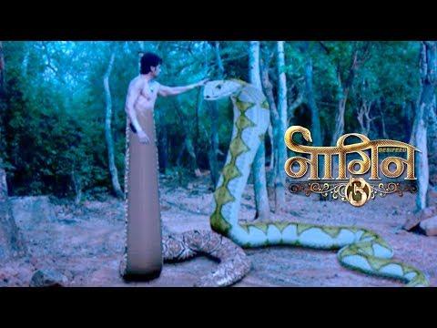 Naagin 3 - Mahir बना नागराज, Bela करेगी Mahir को मारने की कोशिश