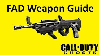 FAD Assault Rifle Weapon Guide Call of Duty Ghosts Best Soldier Setup