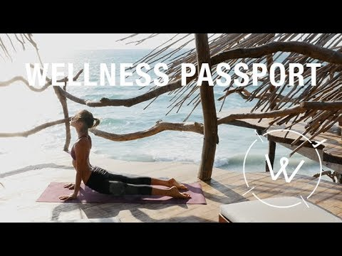 WELLNESS PASSPORT // Travel + Wellness TV Show Reel (2017)