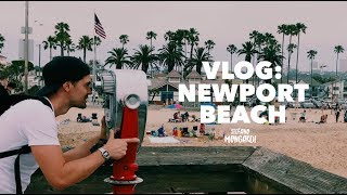 VLOG : Delfini a Newport Beach