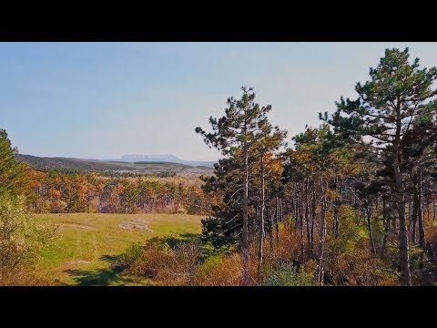Коттеджный поселок Лаванда Парк - яркие краски осени 2018г