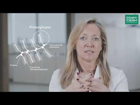 ¿Qué es un Proteoglicano ?