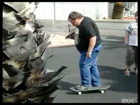 Watch Fat Dad Falls Off Skateboard Video   Break.com.flv